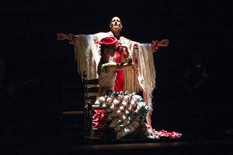 Flamenco Danza Clases Baile Sevilla (3)