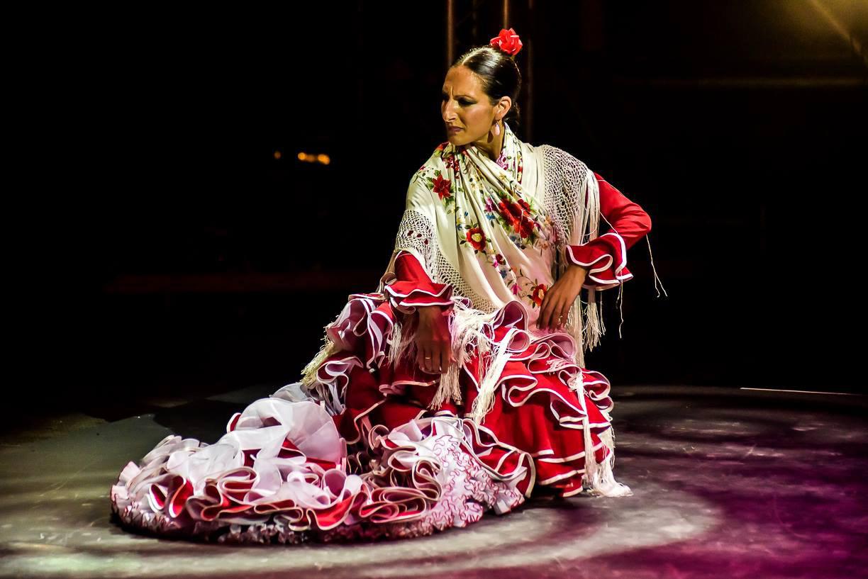 Flamenco Danza Clases Baile Sevilla (4)